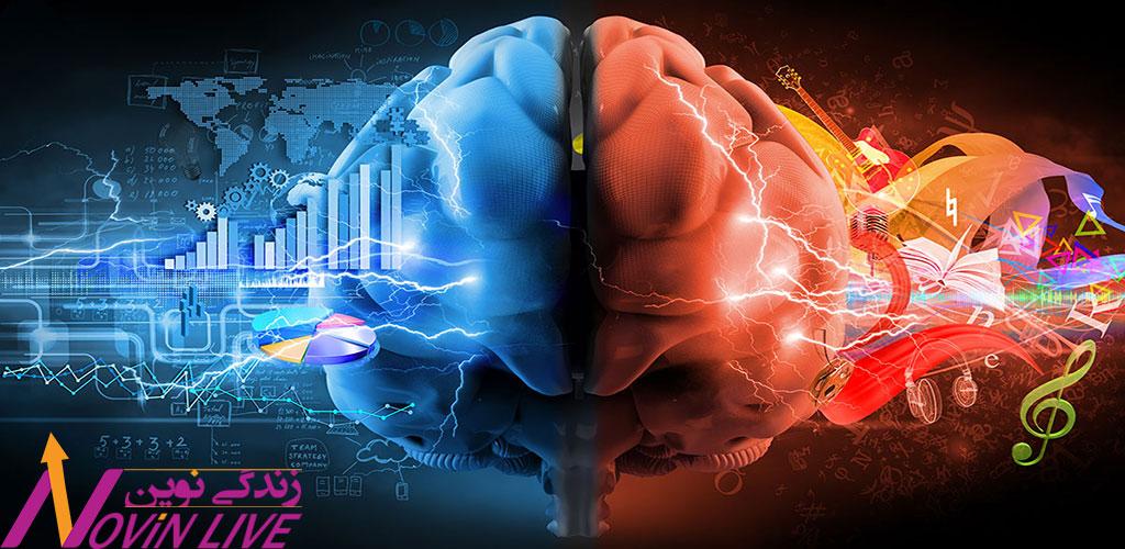 کاربرد انواع هوش و نقش احساسات در سازمان