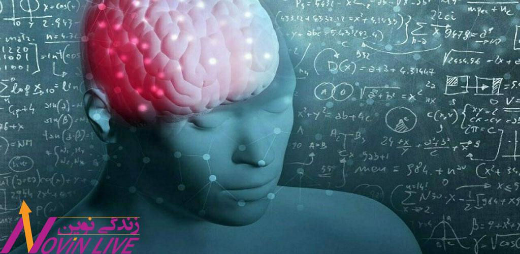 احتمال و ارزش در مغز -آناتومی تصمیم گیری خرید مغز-نورومارکتینگ